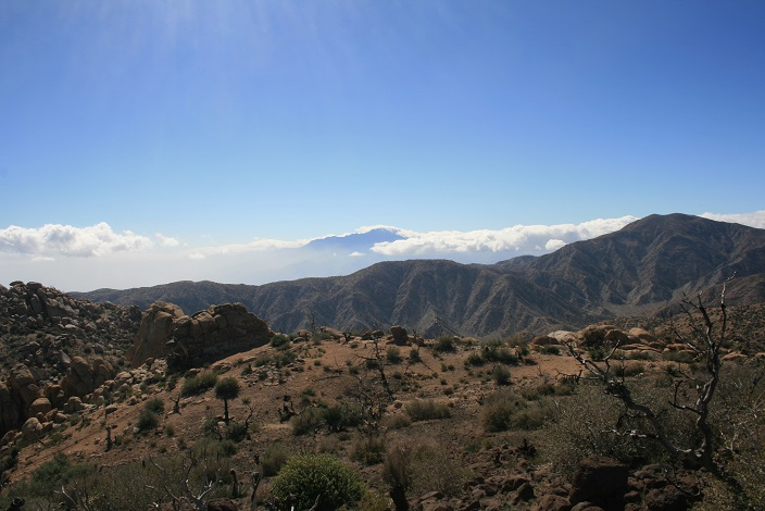 San Jacinto as seen from Chaparossa Peak