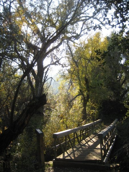 Crossing the footbridge in Liberty Canyon