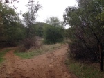 0:21 - Stay right at the first junction with the Bobcat Trail (times are approximate)
