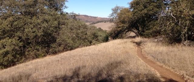 Descending the Trans Preserve Trail