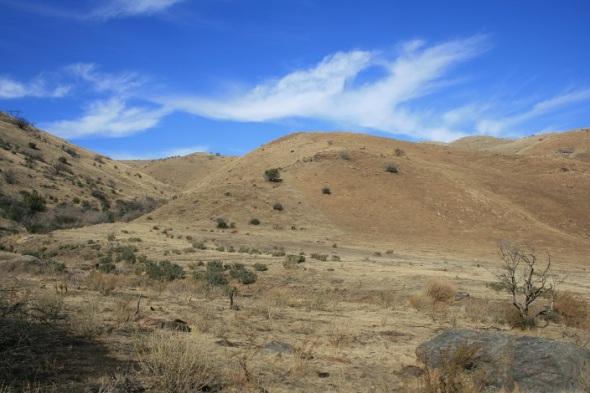 Rolling hills below Sierra Pelona