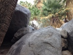 1:00 - Rock scrambling at the end of the first palm grove