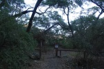 0:00 - Trailhead at the end of Trabuco Creek Road (click thumbnails to see the full sized version)