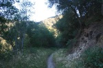 1:39 -  Shade in the upper end of a tributary of Romero Canyon