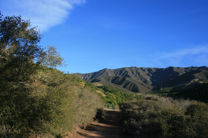 View of the mountains from just below the gazebo, Toro Canyon Park