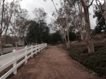 0:50 - Bridle path on the north side of Avenida Pico (times are approximate)