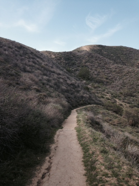 "Top of ""The Wall"", descending into Arroyo Verde Park"