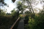 0:09 - Footbridge leading away from the lake toward the marsh (times are approximate)