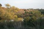 0:35 - Upper Pond