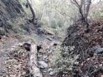 0:07 - Falls Canyon creek bed