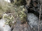 0:03 - Climbing the rock ledge on the north side of the creek (be careful!)