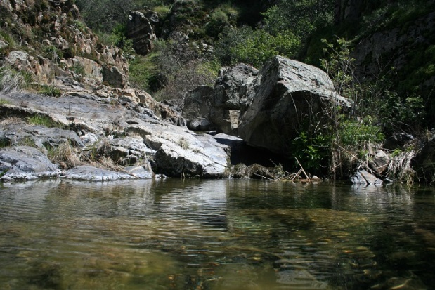 Pool in Upper Hot Spring Canyon