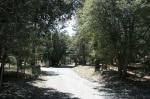 0:00 - Start of the hike, Acorn Drive