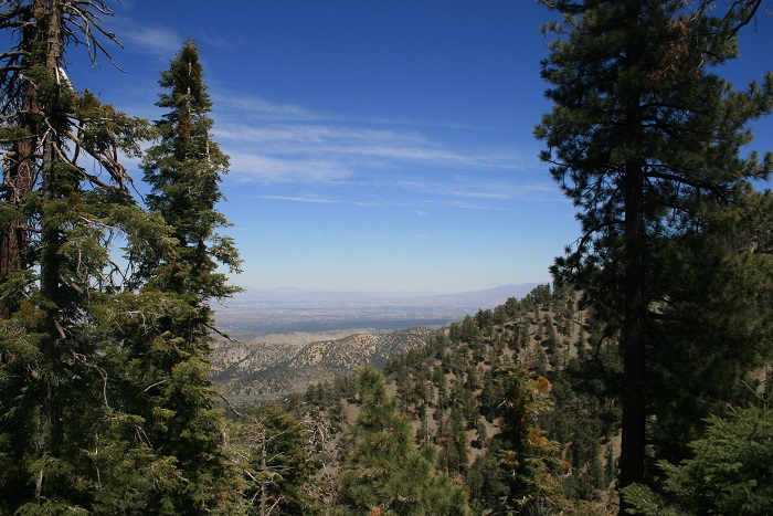 View of the high desert from the Acorn Trail