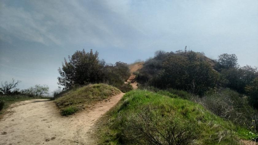 Condor Trail, Griffith Park, CA