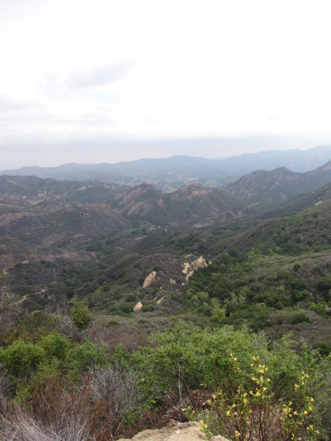 Malibu Creek State Park from the Bulldog Motorway