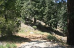 0:00 - Upper trail head, Islip Saddle (click thumbnails to see the full sized versions)