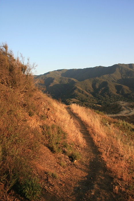 Descending the Aliso Canyon Loop