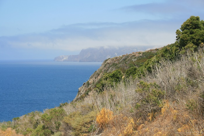 View of the coastline of Santa Cruz Island, Channel Islands National Park, California