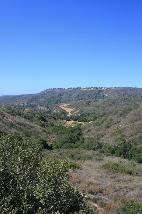 View from just below Moulton Peak on the Five Oaks Trail