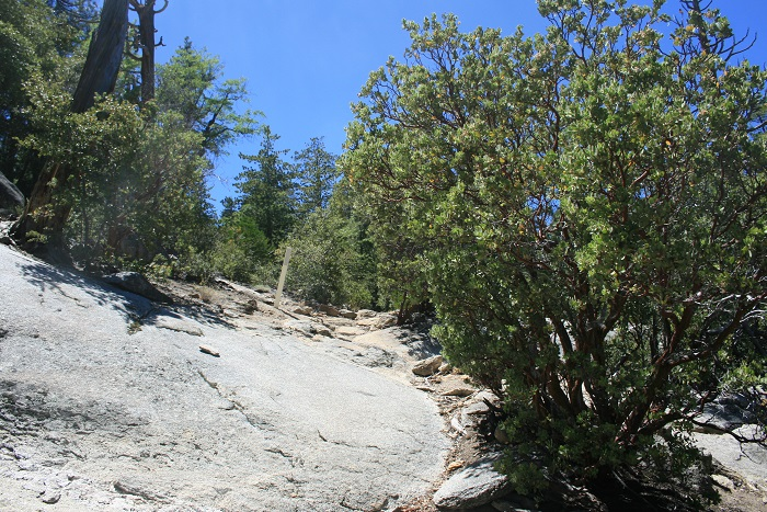 Idyllwild Nature Center Perimeter Trail