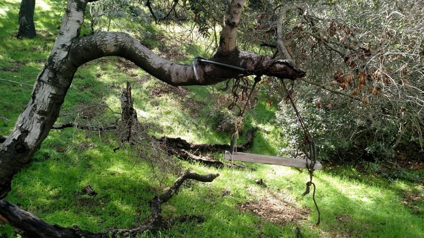 Hollywood Reservoir Single Track Trail