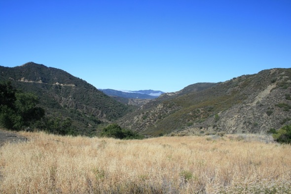 View from the Nineteen Oaks Trail Camp