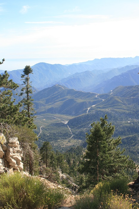View from the saddle on the Hawkins Ridge Trail