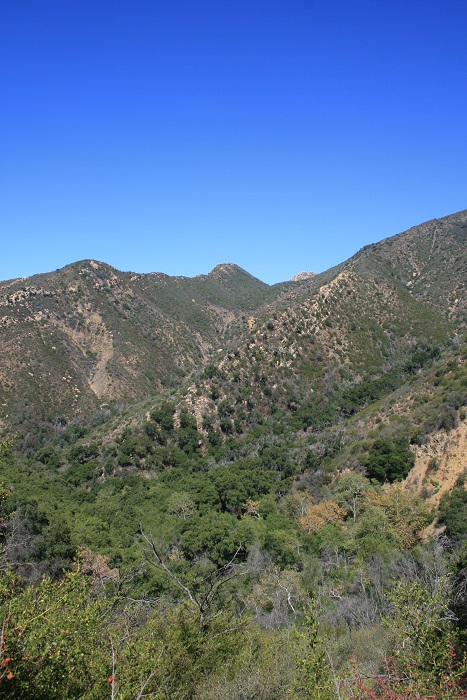 Hills above Rattlesnake Canyon as seen from just below Gibraltar Road
