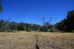 0:44- On the Saddleback Trail