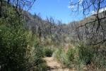 1:18 - The Gabrielino Trail (turn left)