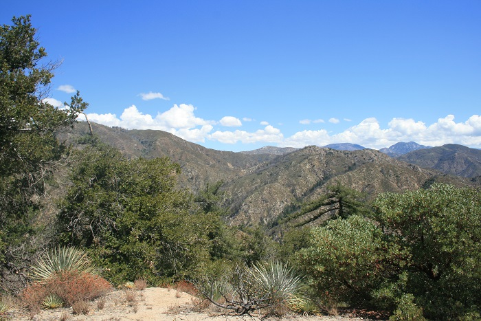 View of the San Gabriel Mountains from the Valley Forge Trail