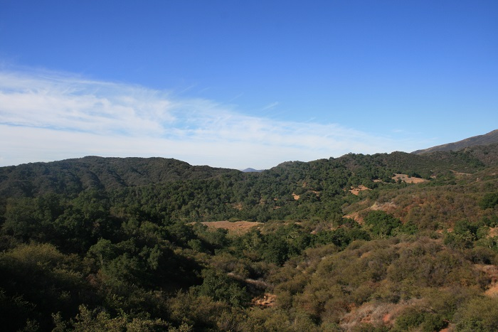 View from the top of the Rice Canyon Trail