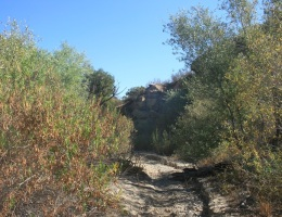 Bottom of the canyon, Chatsworth Trails Park