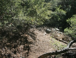 Leaving the canyon, heading toward Mountain Home Flats, San Bernardino National Forest