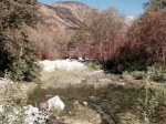 Stream in Dry Canyon, North Etiwanda Preserve