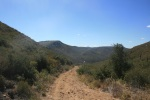 Descending the Soapstone Grade Fire Road, Cuyamaca Rancho State Park