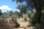 Hill Trail, Cuyamaca Rancho State Park