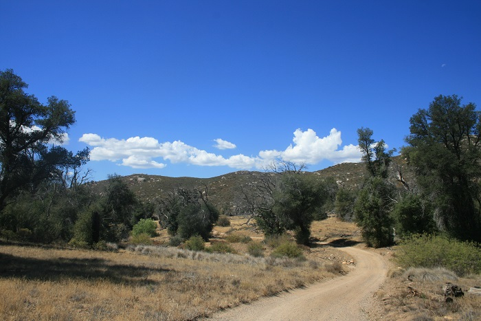 Upper Green Valley Fire Road, Cuyamaca Rancho State Park