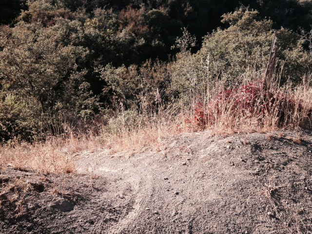 Start of the Arroyo Burro Trail, Los Padres National Forest, Santa Barbara