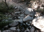 Stream crossing on the Arroyo Burro Trail, Los Padres National Forest, Santa Barbara