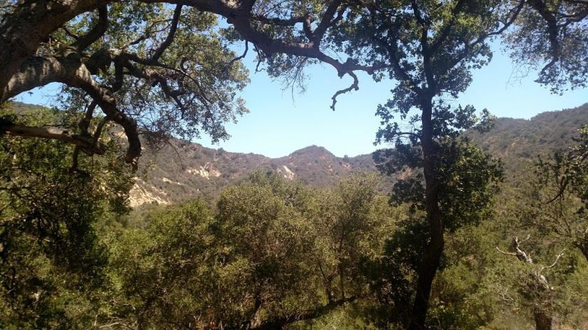 Arroyo Hondo Preserve, Santa Barbara County, CA