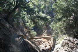 Footbridge on the Bear Divide Trail, Angeles National Forest