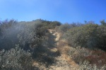 Start of the Bear Divide Trail, Angeles National Forest