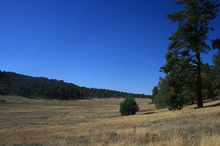 Panoramic view of Big Laguna Meadow, Cleveland National Forest, eastern San Diego County