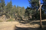 Service road, Cleveland National Forest, eastern San Diego County