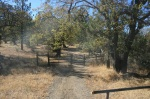 Start of the Noble Canyon Trail in the Laguna Mountains, San Diego County