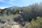 Cactus Springs Trail crosses Deep Creek, Santa Rosa Mountains