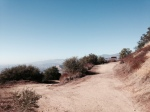 On the trail to Knapp's Castle, Los Padres National Forest