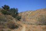 Single track trail leading into a canyon, Michael Antonovich Regional Park